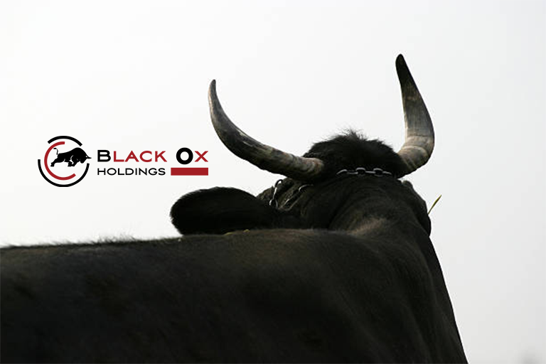 Black Ox Holdings